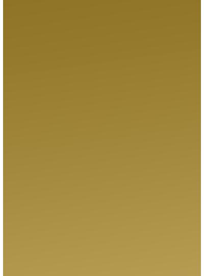 logo_gull_symbol